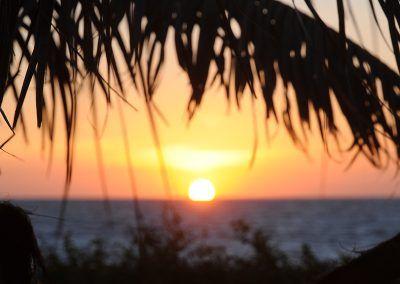 Sunset-Palmtree-Mancora