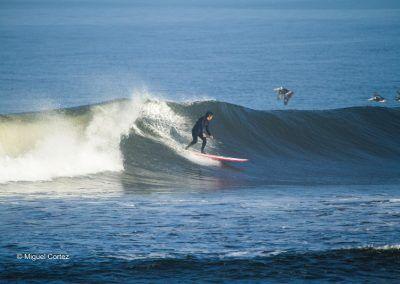 peru surf adventures